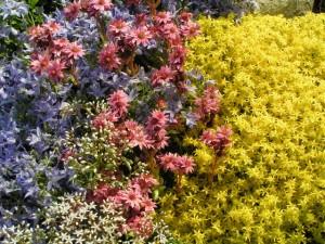 RVS Tuinen - Aanleggen tuin Bussum